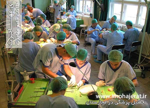 دانشگاه پزشکی درمجارستان