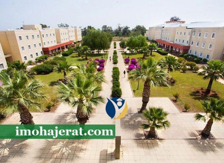 دانشگاه مدیترانه ی شرقی قبرس