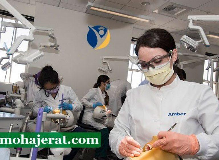 دانشگاه دندانپزشکی گرجستان