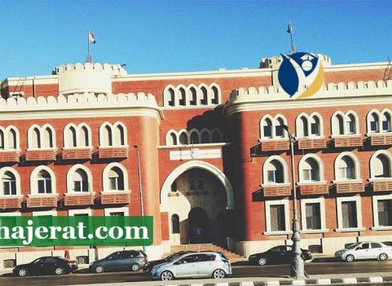 دانشگاه ابیدو