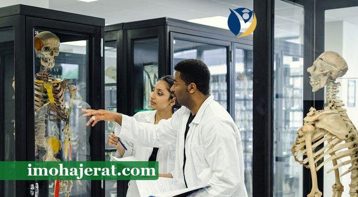 تحصیل پزشکی در دانشگاه های اروپا