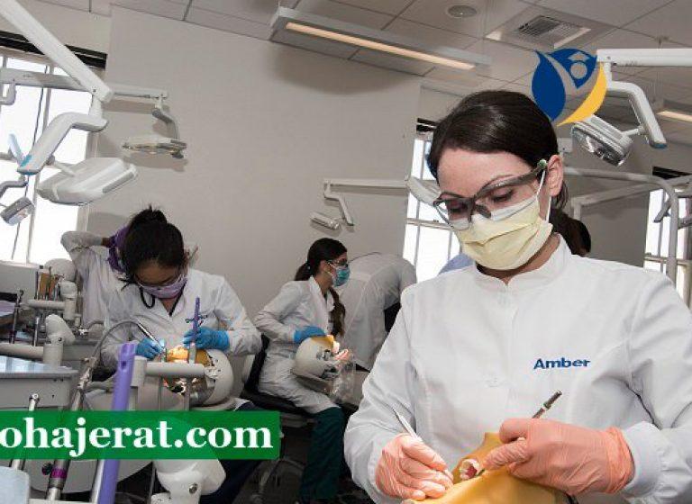تحصیل دندانپزشکی در اسلواکی