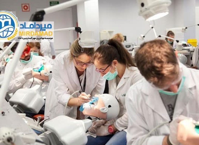 تحصیل پزشکی و دندانپزشکی در استونی