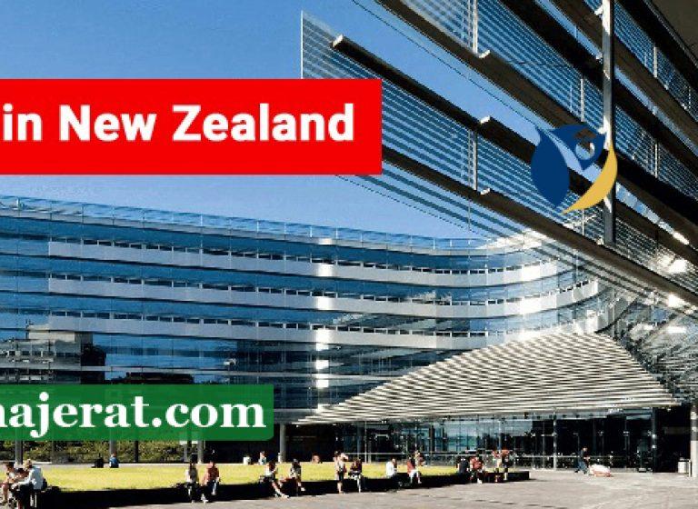 دوره های زبان در نیوزلند