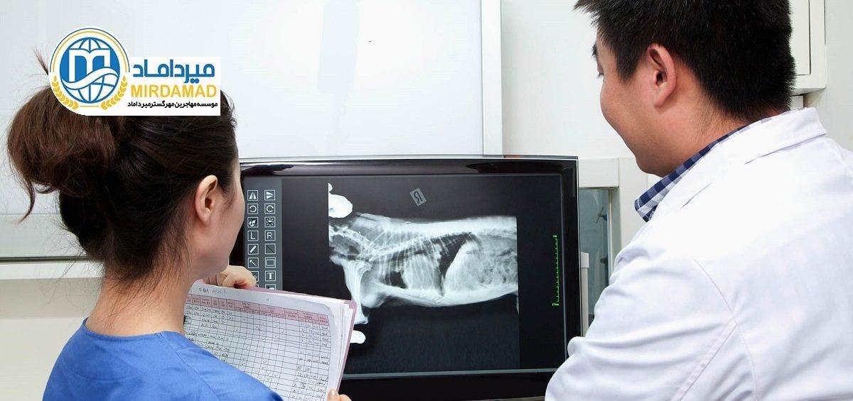 تحصیل دامپزشکی در کشور اتریش