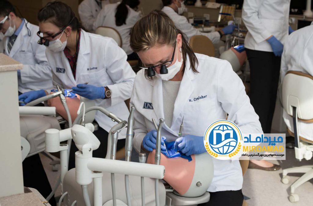 تحصیل پزشکی و دندانپزشکی در ایسلند