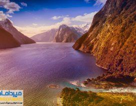 جذابیت های نیوزلند برای مهاجرت